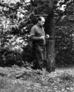 A. Plužnikov
