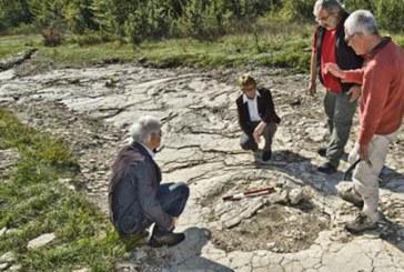 Arheolozi amateri pronašli najveći otisak dinosaurusa na svetu
