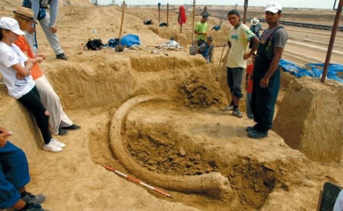 Kiša otkrila fosil džinovskog jelena