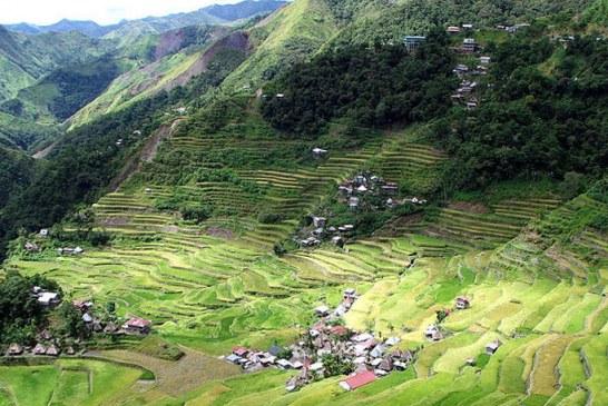 Filipini: Otkriveni sarkofazi