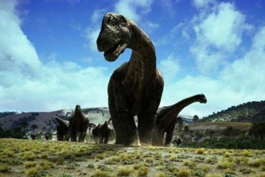 USKORO OTVARANJE: Dino-park u Svilajncu