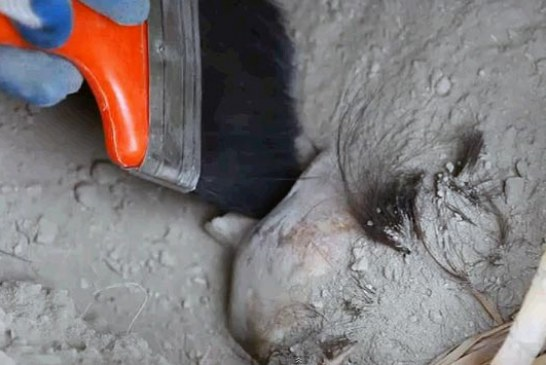 Otkrivena grobnica antičke civilizacije Vari