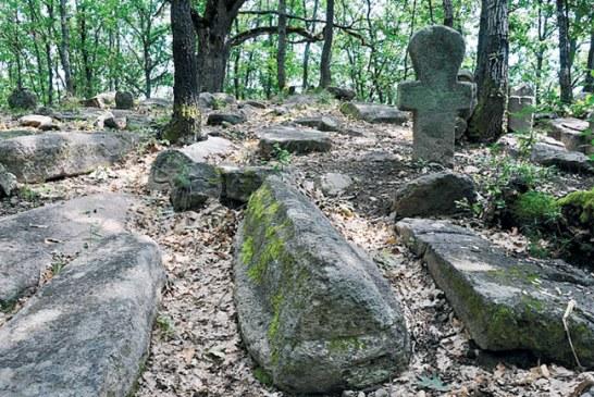 Zaboravljeno groblje Nemanjića