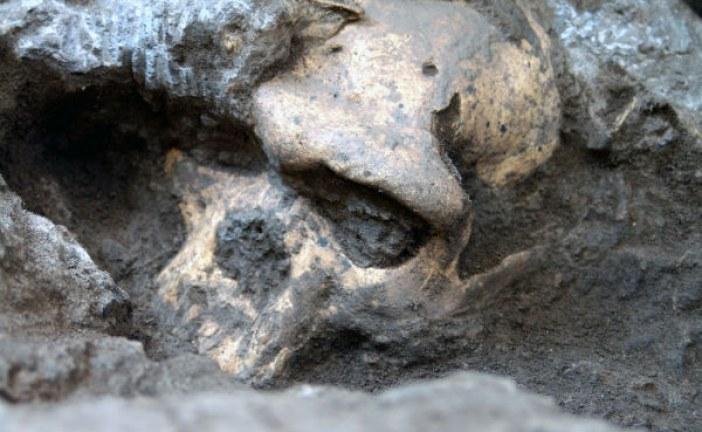 Lobanja stara 1,8 miliona godina menja celu ljudsku istoriju?