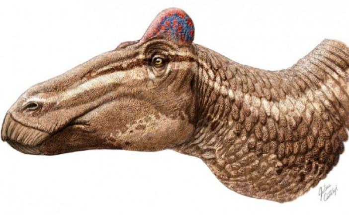 Otkrivena kožna ćuba kod dinosaurusa