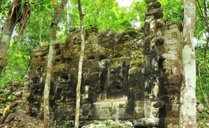 Drevni grad Maja pronađen u džungli
