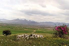 Makedonija: Spomenike Srbima ruše, vojnicima Rajha dižu