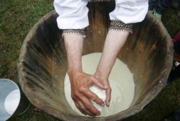 Ljudi su pravili sir pre 7500 godina