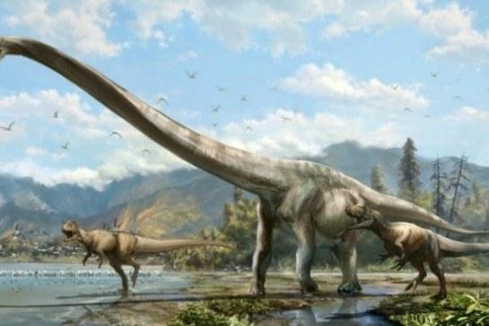 Pronađeni ostaci pravog džina: Ovo je najveće biće koje je ikada hodalo Zemljom