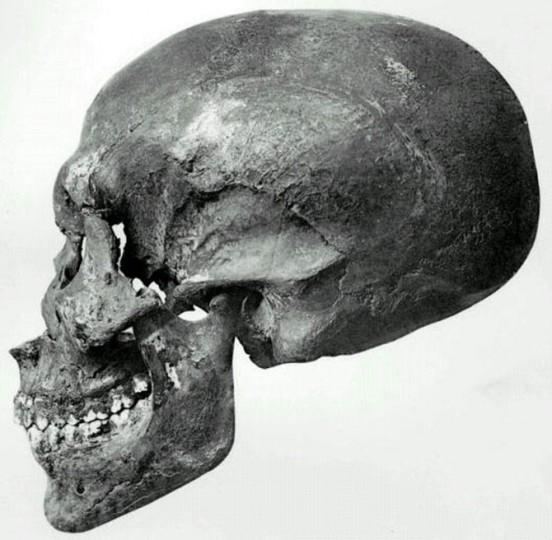 Lobanja pronađena u egipatskoj kraljevskoj grobnici KV55.