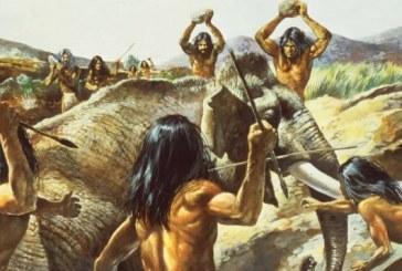 Ljudi su značajno smanjili populaciju mamuta pre 30 hiljada godina