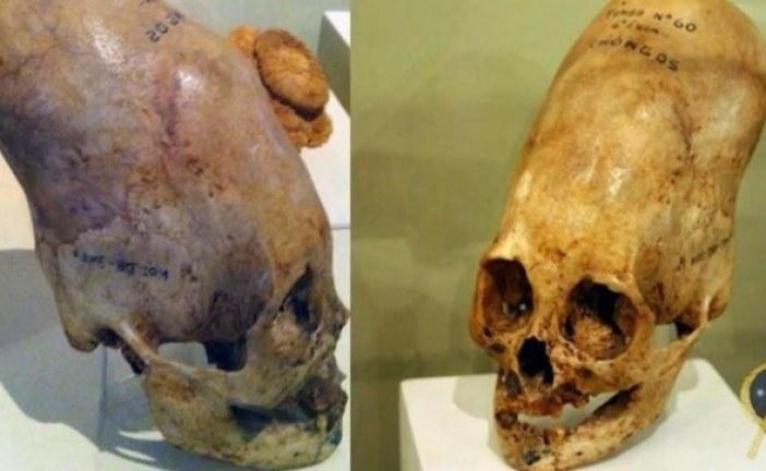 Ko su oni, odakle su došli: DNK analiza pokazala da lobanje iz Parakasa nisu ljudskog porekla