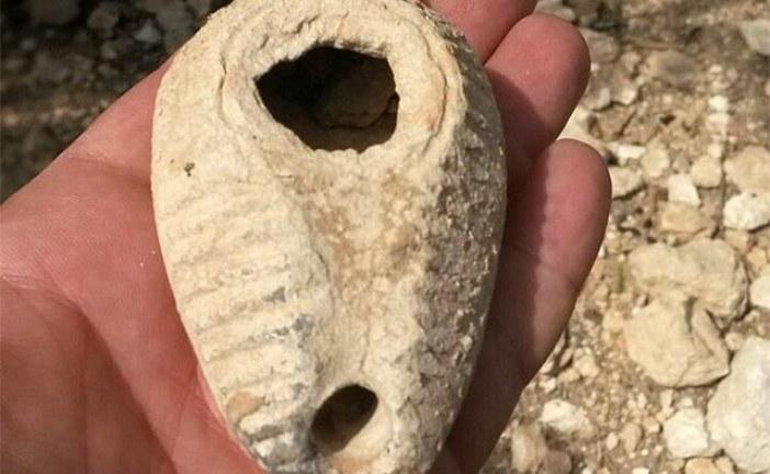 Kopajući jazbinu jež 'otkrio' lampu iz 14 veka