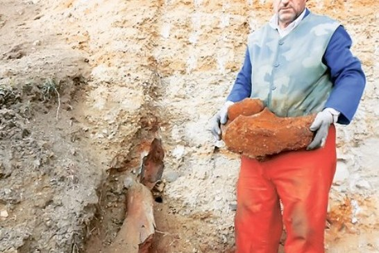 Otkriveni ostaci mamuta stari preko deset miliona godina