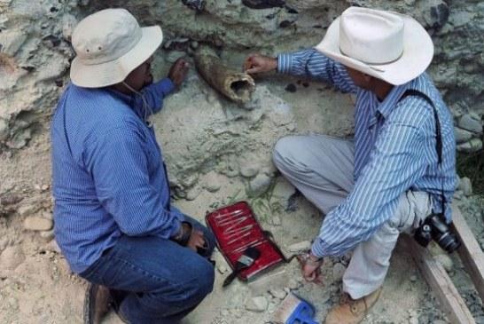 U Estoniji pronađeni ostaci drevnih brodova