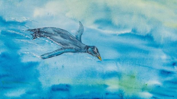 Umetnički prikaz vodene ptice koja je živela pre 25 miliona godina