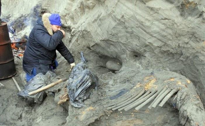 Ljudi su bili na Arktiku 10.000 godina pre nego što konvencionalna istorija tvrdi