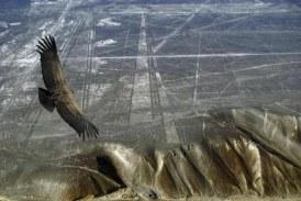MISTERIJA KOJU NIKO NIJE REŠIO: Linije Palpe su 1.000 godina starije od linija Naska