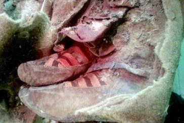 Mongolija: Pronađena retka turkijska mumija stara 1500 godina zakopana na Altaj planini
