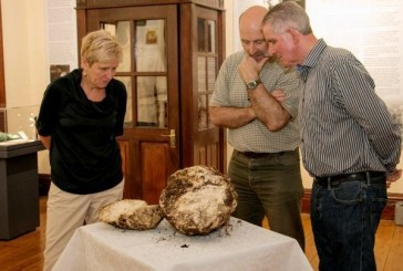 U Irskoj pronađena kugla putera stara 2000 godina i potpuno jestiva