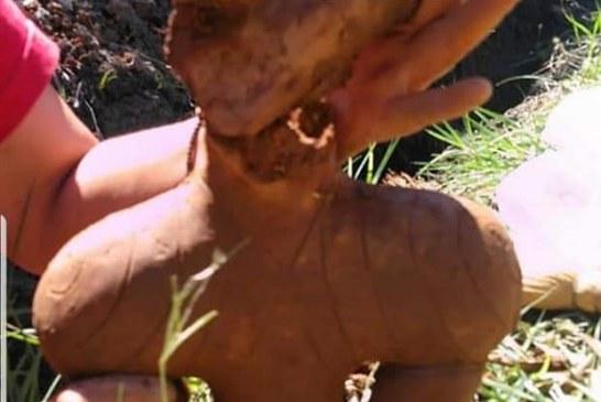 """Epohalno otkriće: Arheolozi pronašli """"Župsku Veneru"""" staru 6 hiljada godina"""