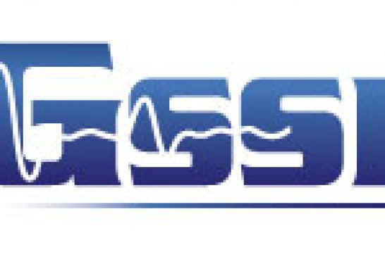 GSSI (Geophysical Survey Systems, Inc.)
