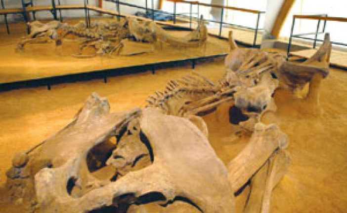Srbija na stazi mamuta