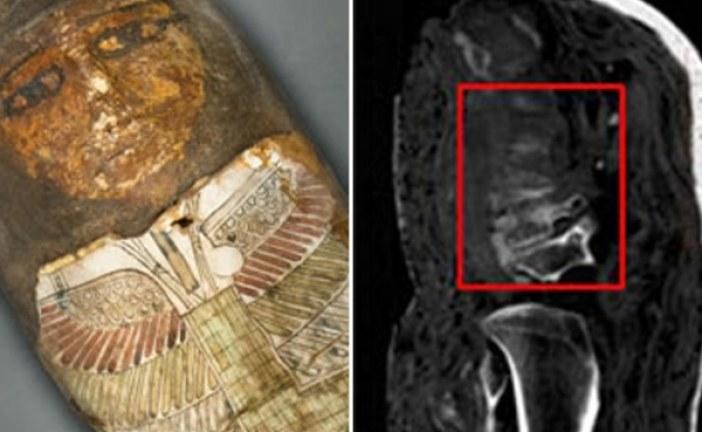 Naučnici tvrde da su dve mumije u Vatikanskom muzeju lažne