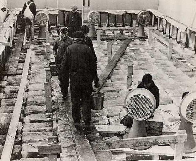 Izrada eksperimentalnog ledenog broda uz jezero Louise u kanadskoj saveznoj državi Alberta. Gotov model je imao dimenzije 18 × 9 × 6 metara, i uglavnom je zadovoljio predviđanja projektanata.