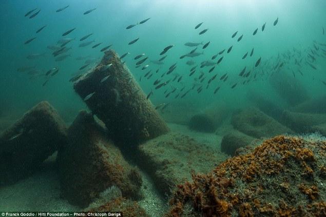 Spavanje sa ribama: Ogromni stubovi u ruševinama Kanope
